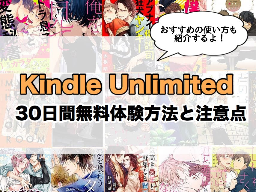 kindleunlimitedの紹介記事